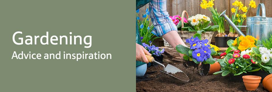 GardenInspirations_GardenAdvice_Buyingguide_wk02_desktop