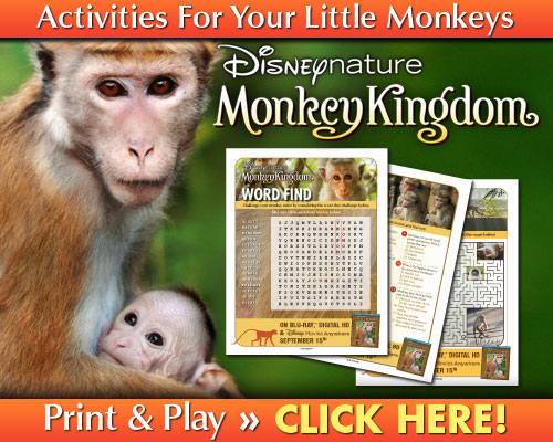 Monkey Kingdom Activity Sheets
