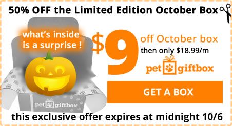 50% Limited Edition Halloween Petbox