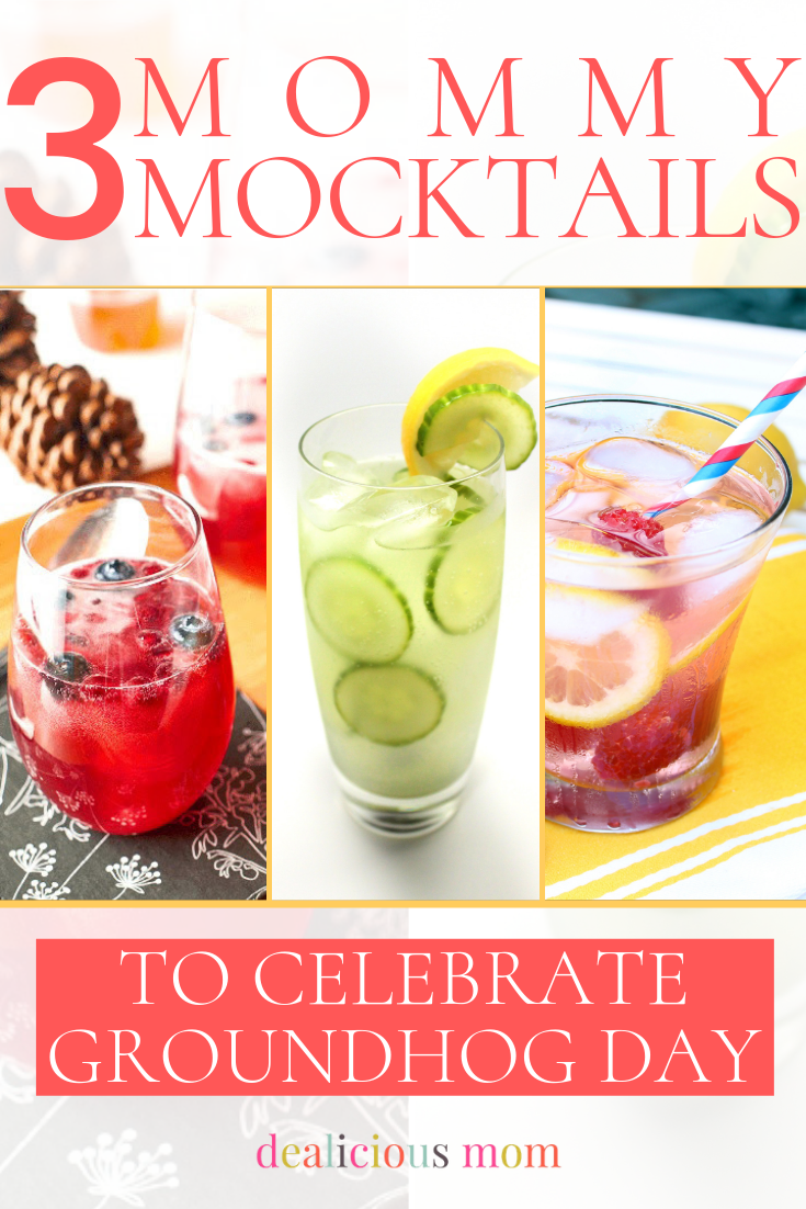 Yes, today is Groundhog Day and no matter what his shadow predicts you can treat yourself to a fruity and fun beverage.  Any one of these recipes will lift your spirits and get you through the rest of the winter. Take a moment for yourself, Mommies, and enjoy one! #recipes #drinks #cocktails #mocktails #groundhogday #groundhog #beverage