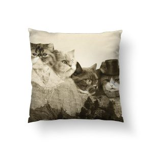 ss-meow pillow
