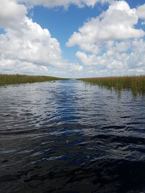 Everglades-Holiday-Park-Airboat-Tour