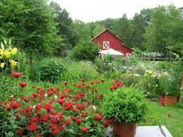 Win an Organic Farm in North Carolina by Writing a 200-word Essay
