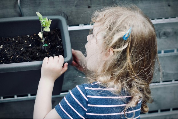 If They Grow It, They'll Eat It! Making a Preschool Edible Garden
