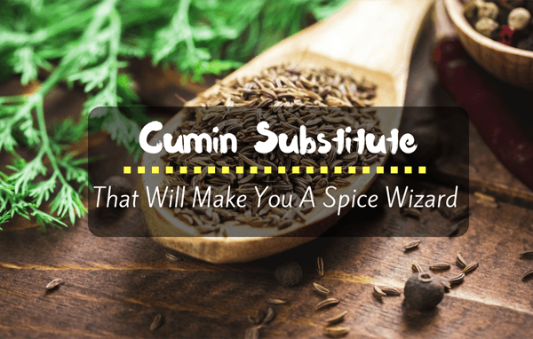 The Best Cumin Substitutes to finish the Perfect Meal!